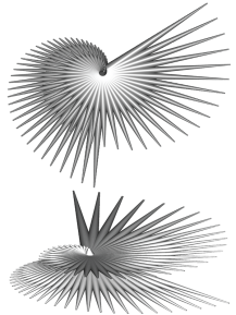 GC_spiral cylinders_root_leaves