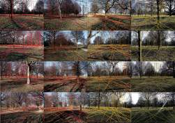 photoPerspectives